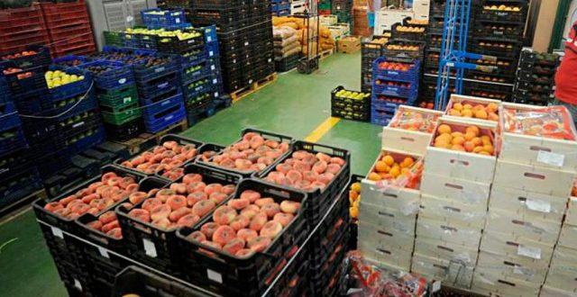 Exportaciones de tecnología alimentaria se han incrementado 126% en los cinco últimos años